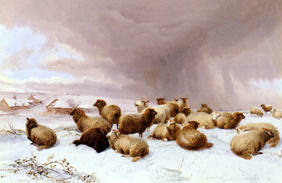 Cooper Thomas Sidney Sheep In Winter