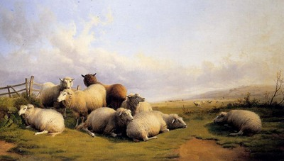 cooper Thomas Sidney Sheep In An Extensive Landscape