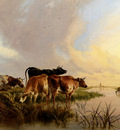 Cooper Thomas Sidney Cattle Watering