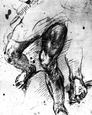 titian study of legs 1548