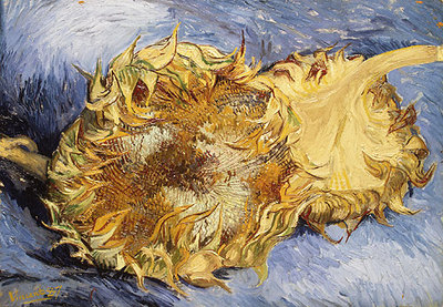 van gogh vincent sunflowers