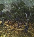 van gogh vincent the olive grove