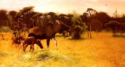 Kuhnert Wilhelm Moose With Her Calf In A Landscape