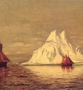 Ships and Iceberg