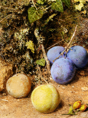 Hunt William Henry Still Life With Greengages And Plums On A Mossy Bank