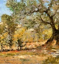 Chase William Merritt Olive Trees Florence