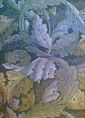blueacanthus