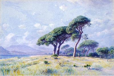 Haseltine William Stanley Cannes