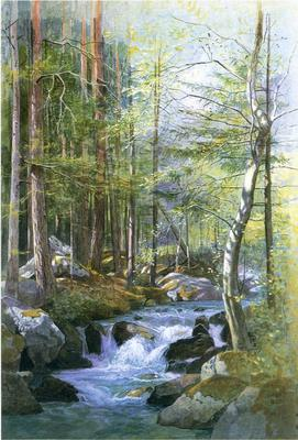 Haseltine William Stanley Torrent in Wood behind Mill Dam Vahrn near Brixen Tyrol