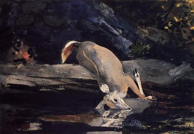 Homer Winslow Fallen Deer