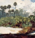 Homer Winslow In a Florida Jungle