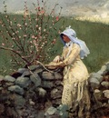 Homer Winslow Peach Blossoms2