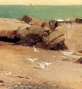Homer Winslow Rocky Coast and Gulls