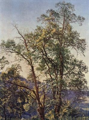 alexander andrejewitsch iwanow