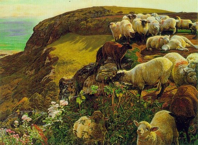Hunt english coasts