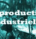 Portal industrie1