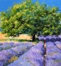 """""""Lavender field"""" Jean-Marc JANIACZYK"""