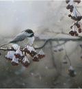Robin Murray Winter Freeze-Chickadee
