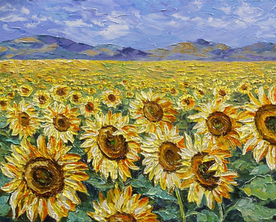 sunflower fields left