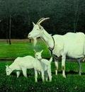 Paul Gosselin - Goat with Lambs - Hyperrealism
