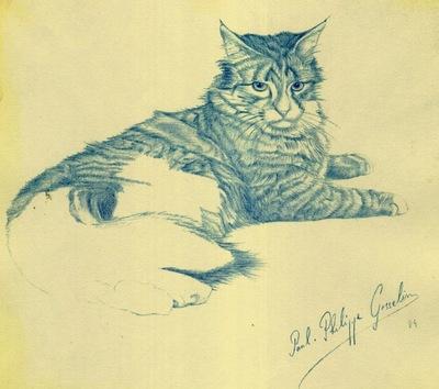 Paul Gosselin The Cat