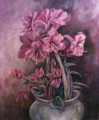 the amarylis flower