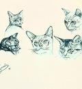 Paul Gosselin - Cats