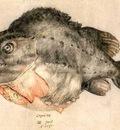 Hendrick Goltzius  1558 - 1617