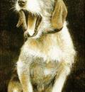 Louis Brasseur - Yawning dog