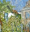 Study for Amina's Yard 5, Beatty, NV, USA