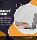 Advantages of Intranet