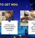 WDG token
